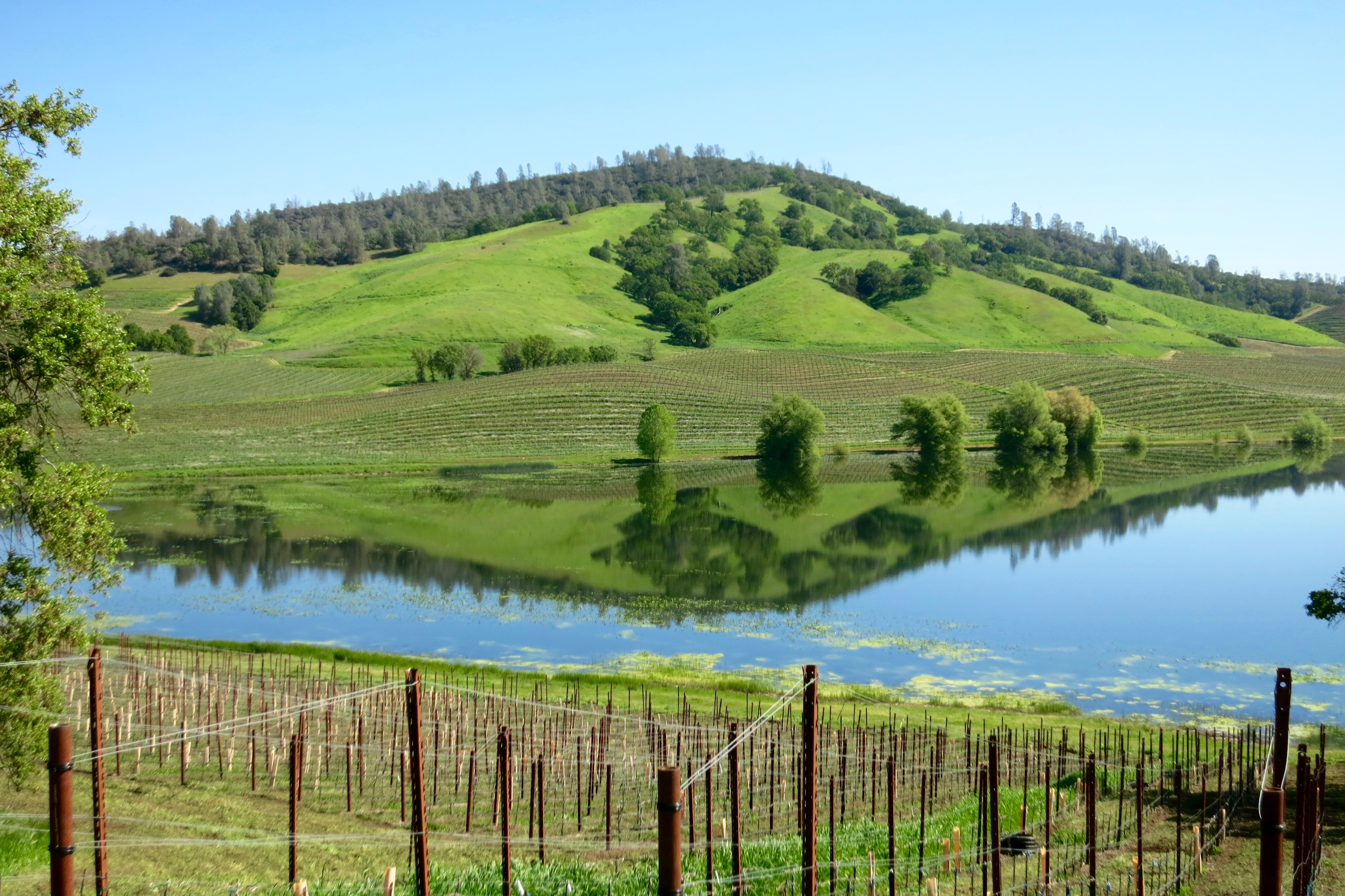 Stunning view of the lake inside Dollarhide Ranch
